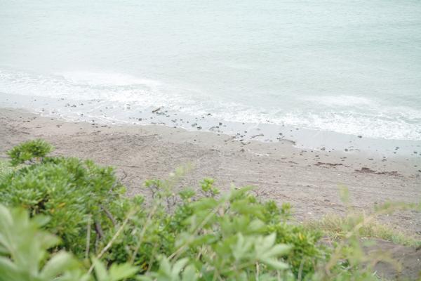 出張撮影KidsPhotoのブログ-逗子海岸