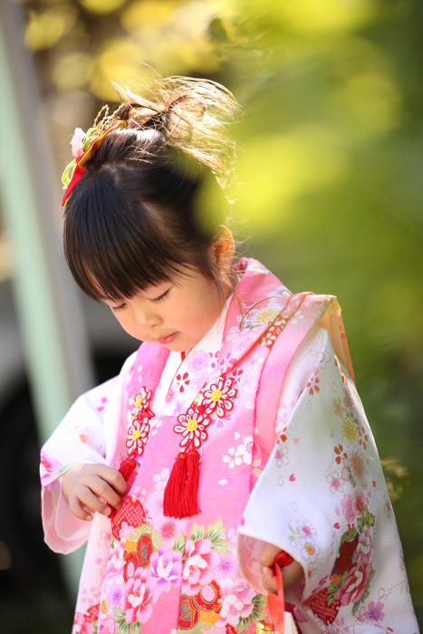 $出張撮影KidsPhotoのブログ-住吉神社 七五三写真