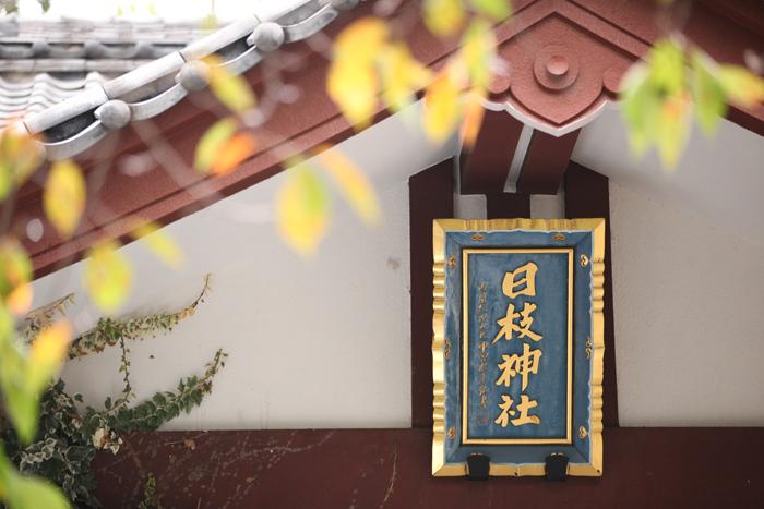 出張撮影KidsPhotoのブログ-日枝神社風景写真