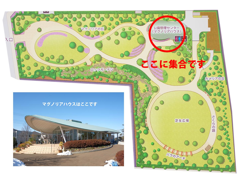 松戸ゆいの花公園