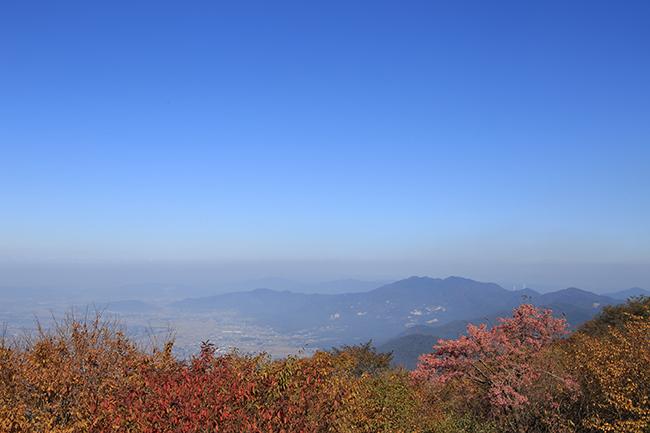 筑波山神社で七五三