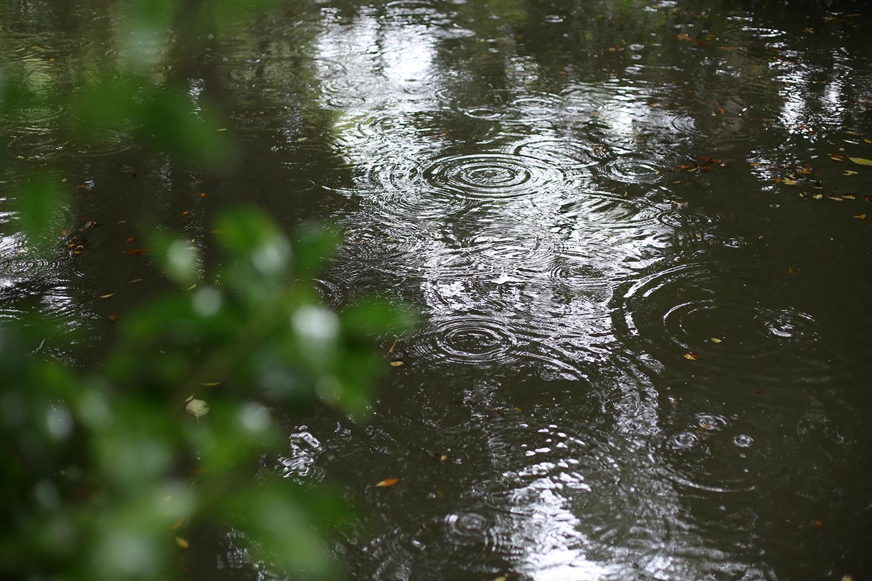 雨の日の七五三出張撮影