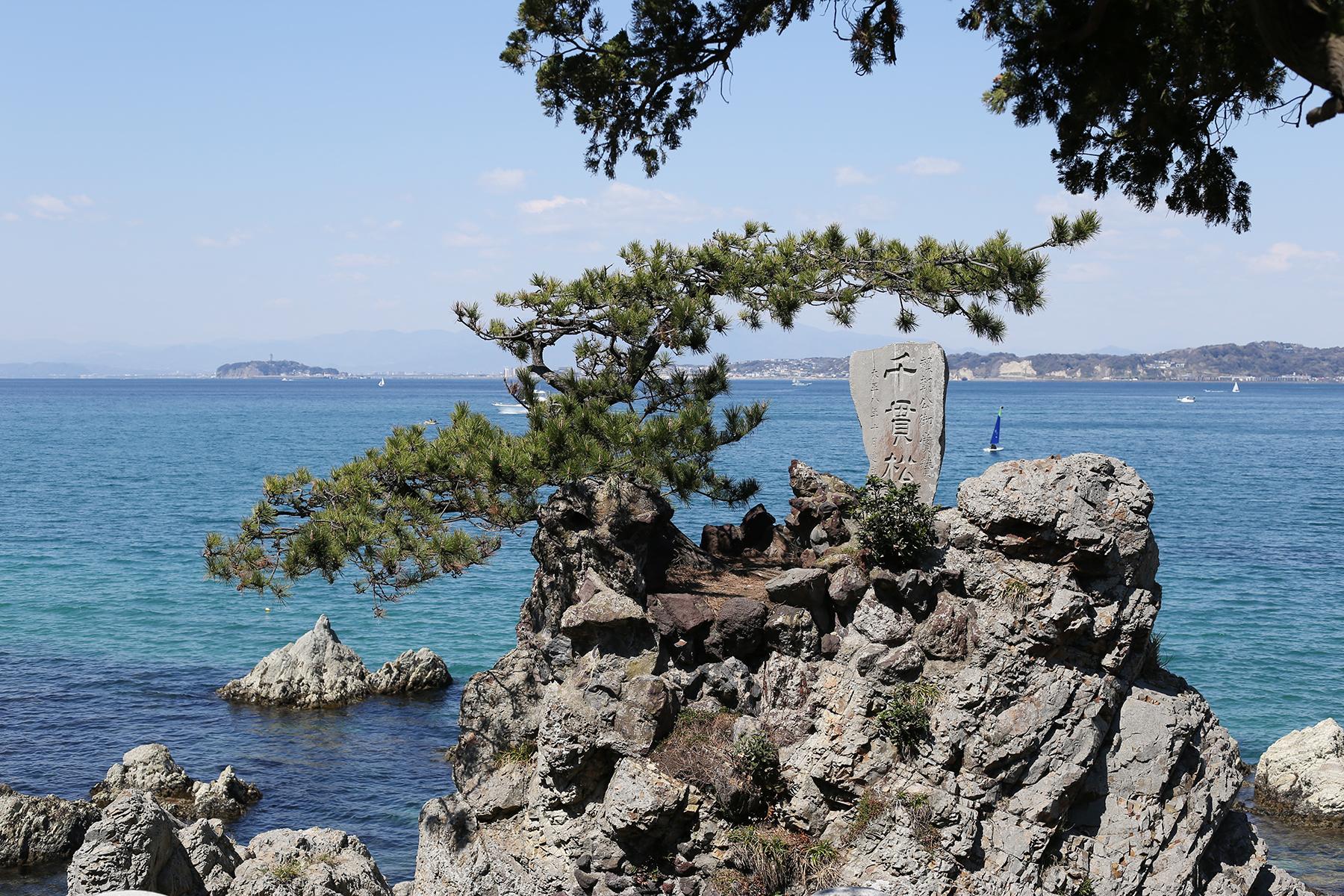 葉山の森戸神社