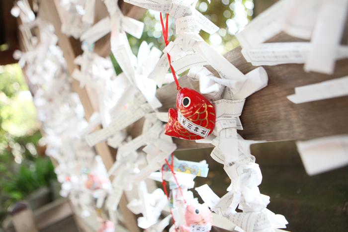 出張撮影KidsPhotoのブログ-七五三 出張 撮影