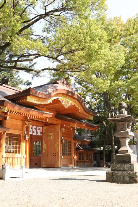 府中の大国魂神社で七五三の出張撮影1