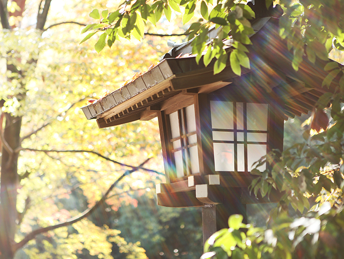 大宮氷川神社の境内