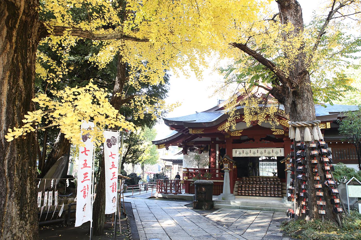 東京都@出張撮影にオススメの神社一覧