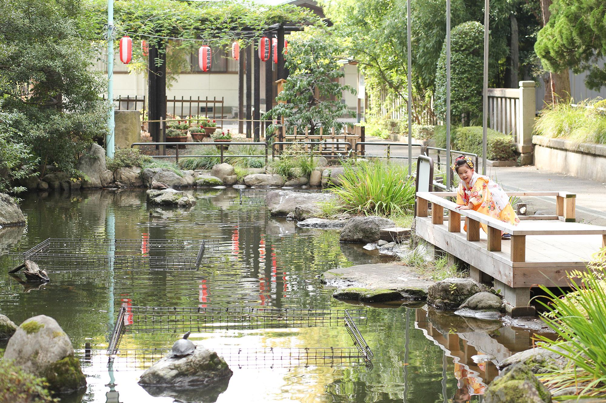 わらび神社の池2
