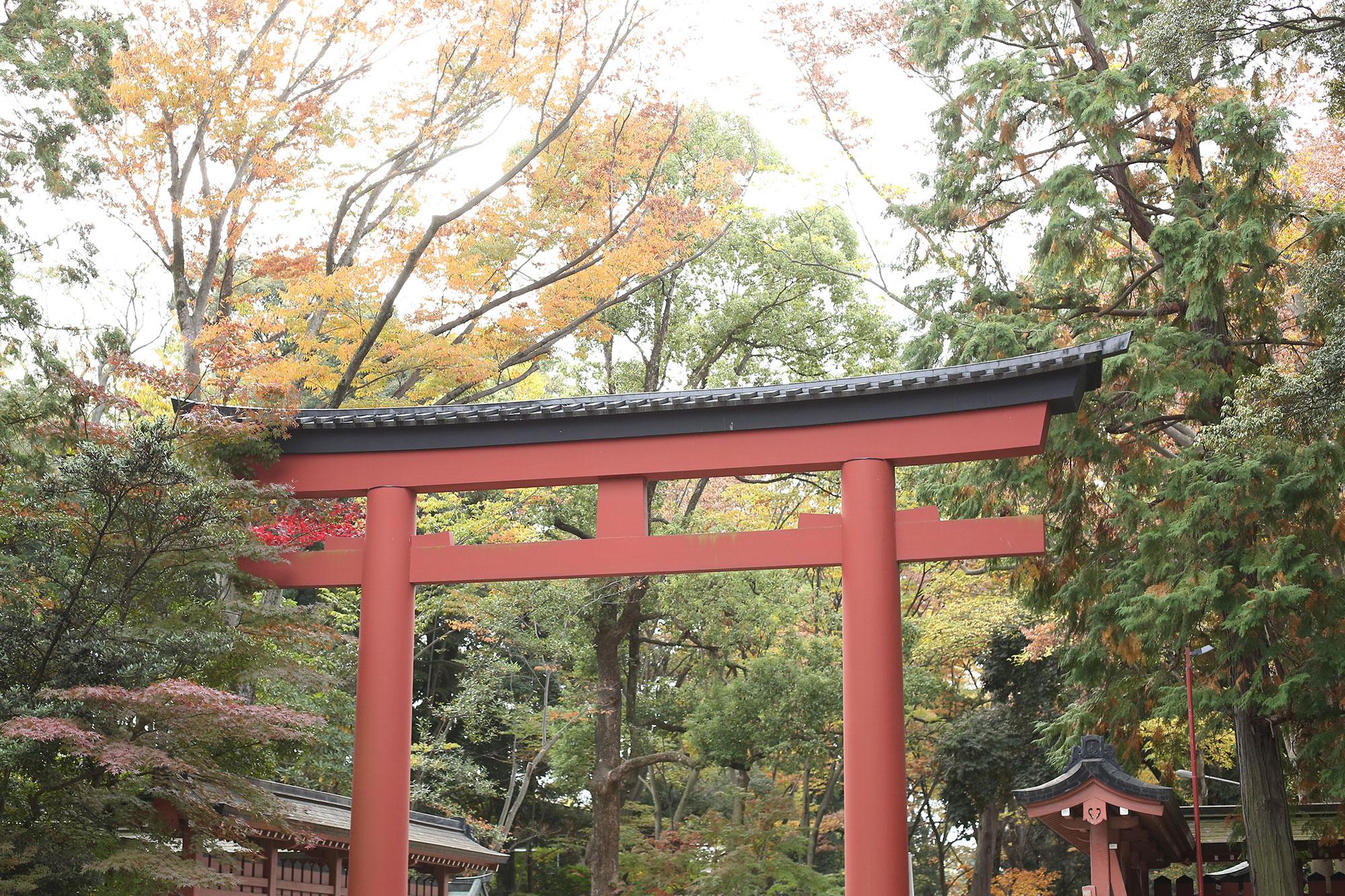 大宮氷川神社の大鳥居