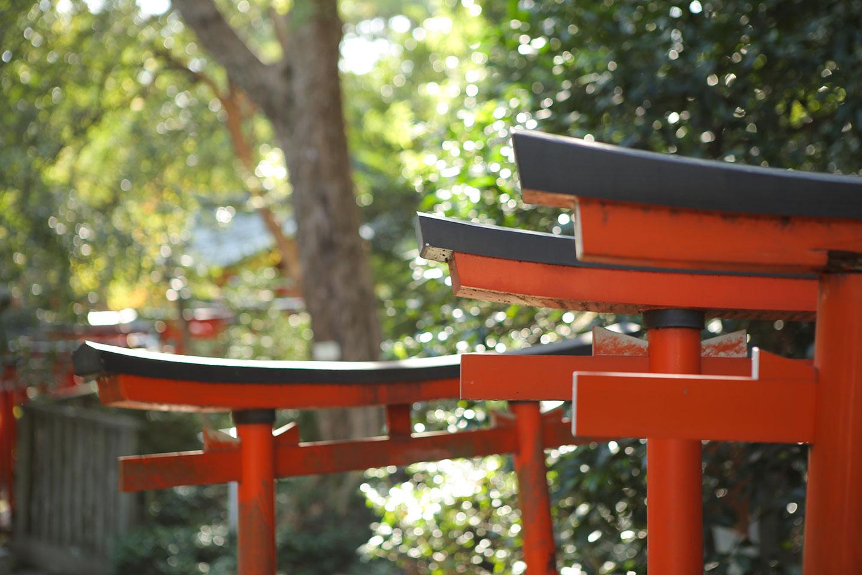 根津神社の千本鳥居3