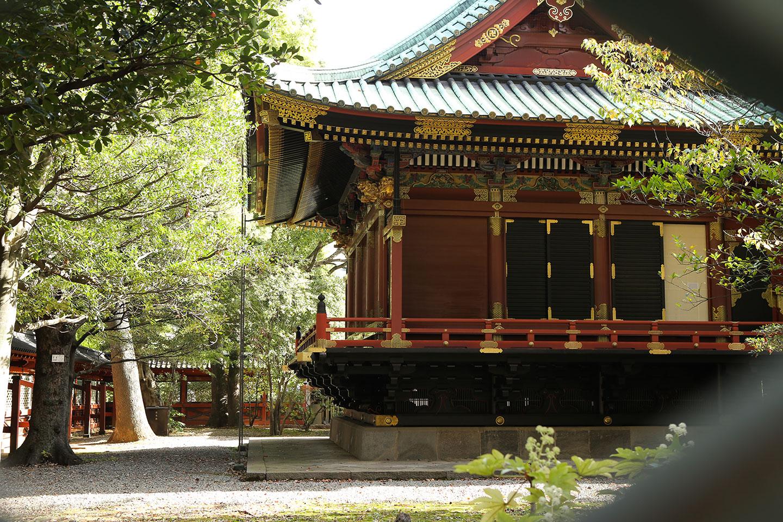 透堀から見える社殿