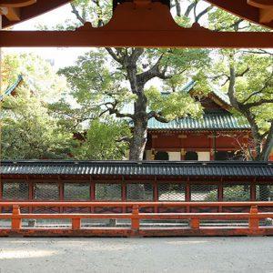根津神社の境内は思わず撮影したくなるほど美しいロケーション