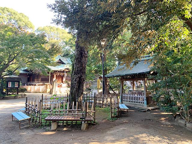 代々木八幡宮のサムネイル