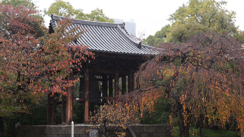七五三に人気のお寺、増上寺