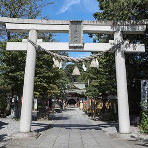 鎮守氷川神社は七五三・お宮参りの出張撮影におすすめ!