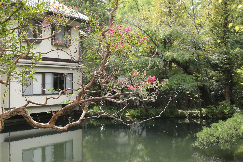 亀島弁財天池