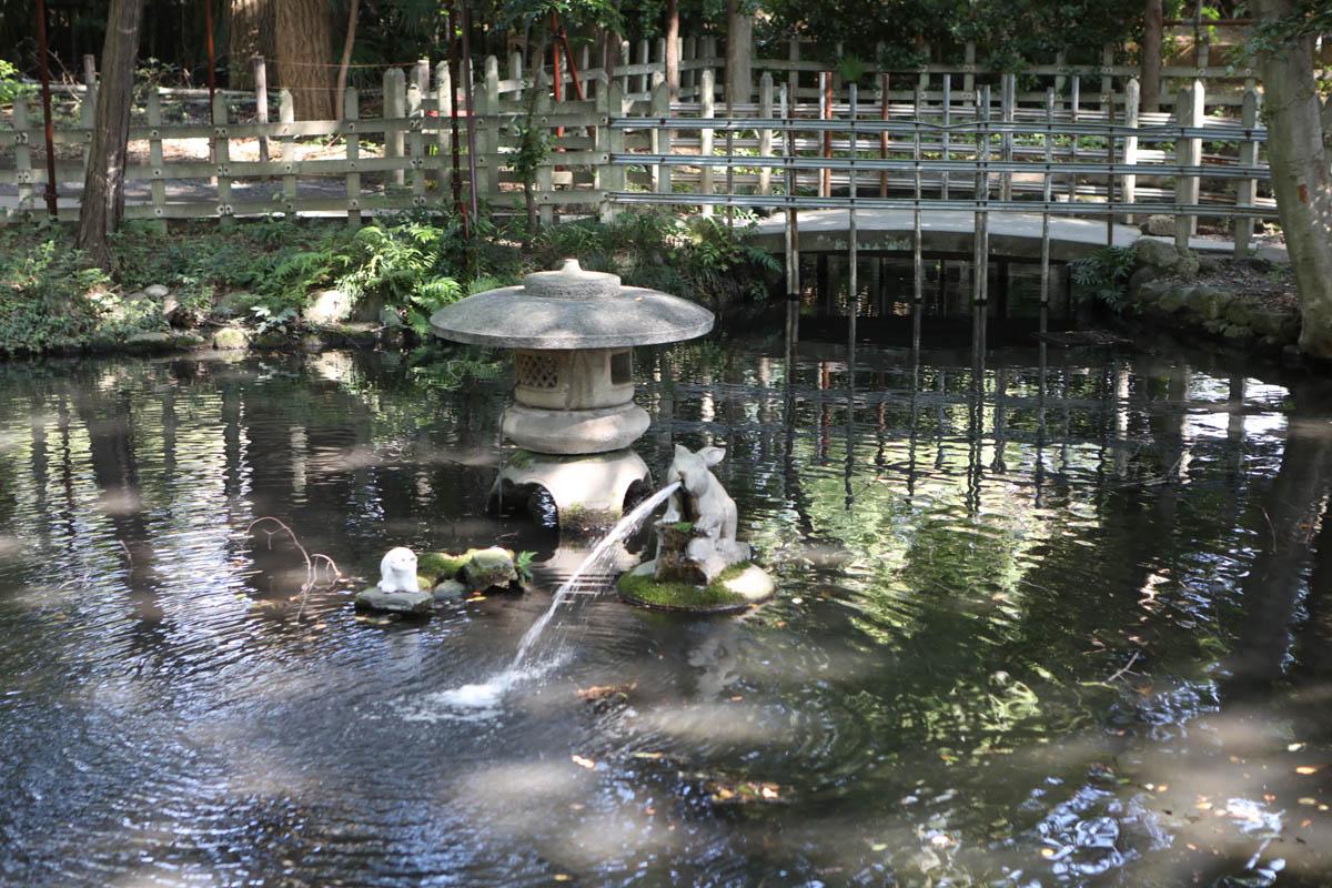 調神社の裏の池