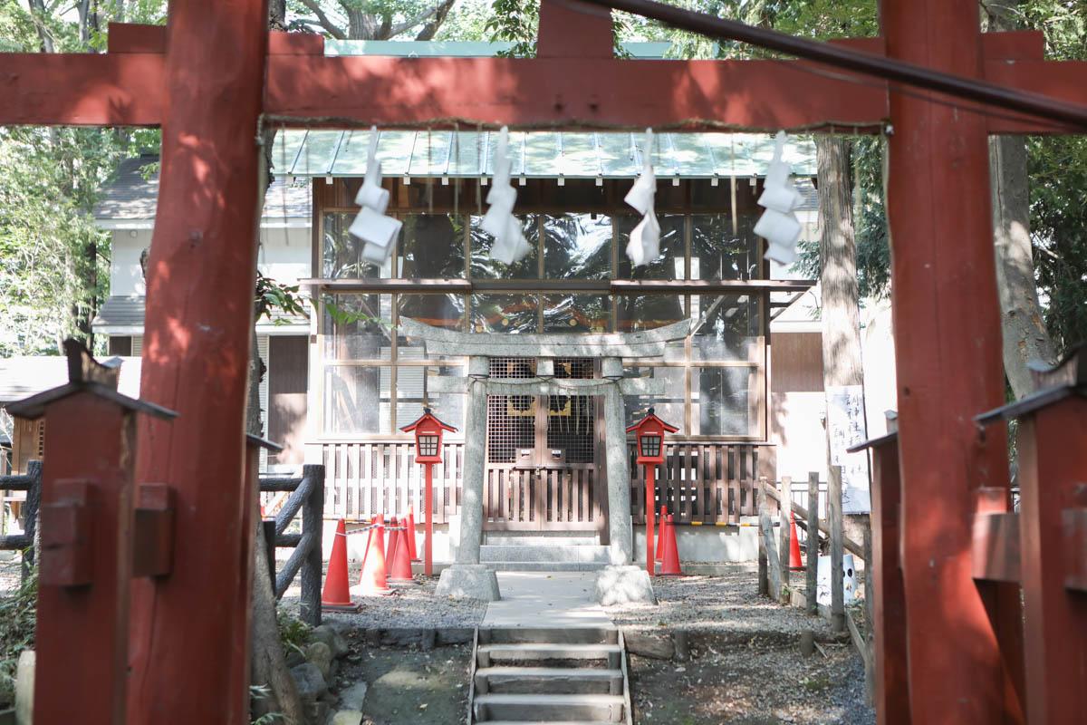 赤い鳥居から旧本殿を臨む