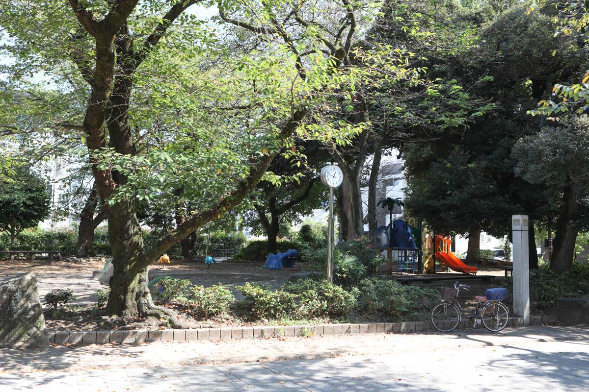 調公園の写真1
